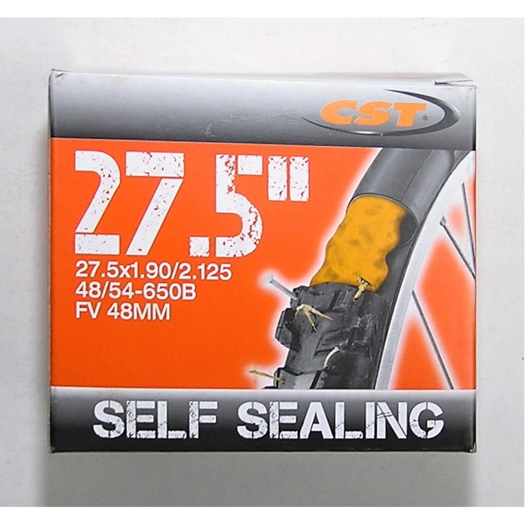 CST 27,5x1,9/2,125 FV 48 mm Self Sealing