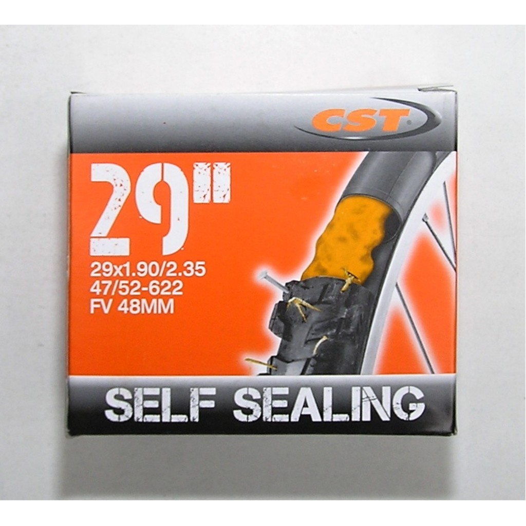 CST 29x1,9/2,35 FV 48 mm Self Sealing